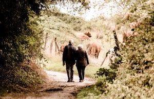 pensione di vecchiaia anticipata