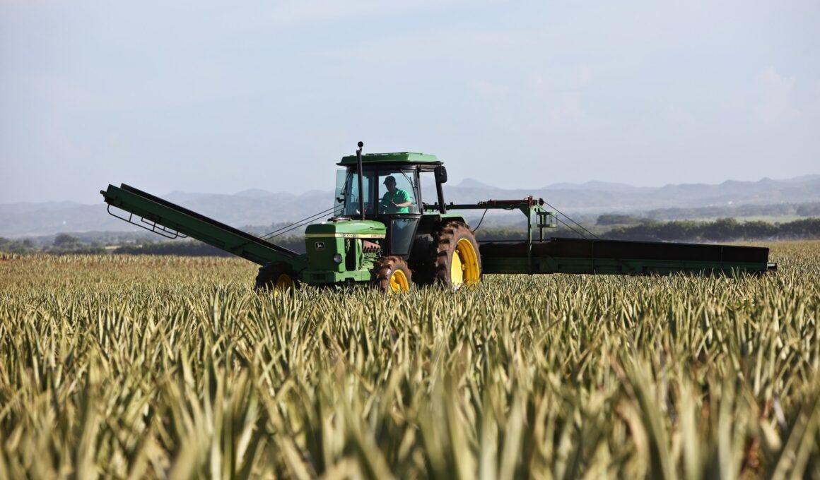 contributi pac agricoltura